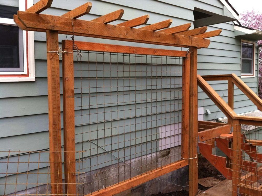 screen trellis for climbing plants landscape design