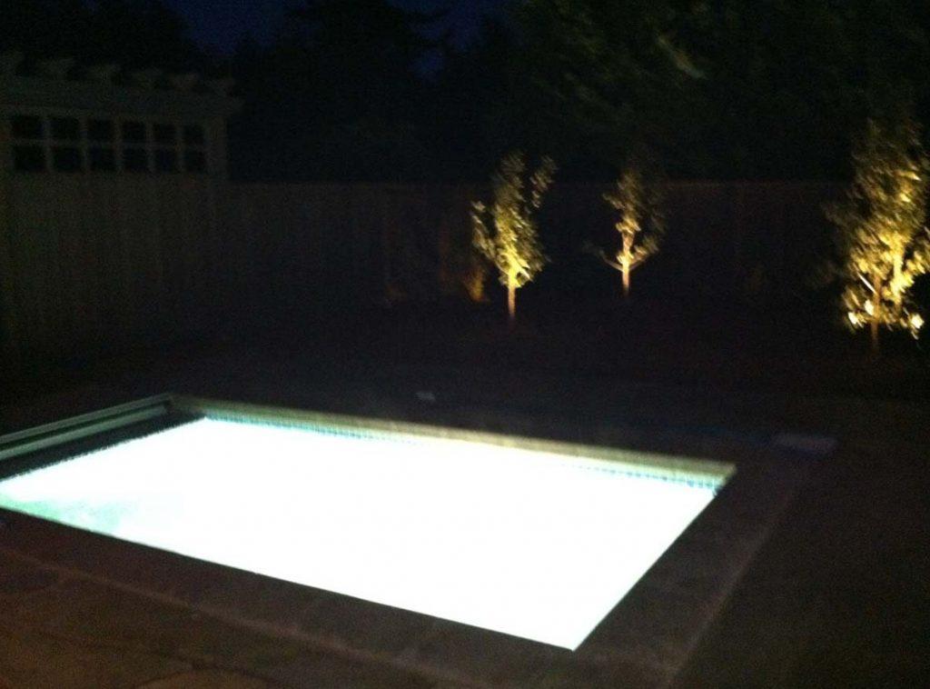 swim spa & screen landscape design 7