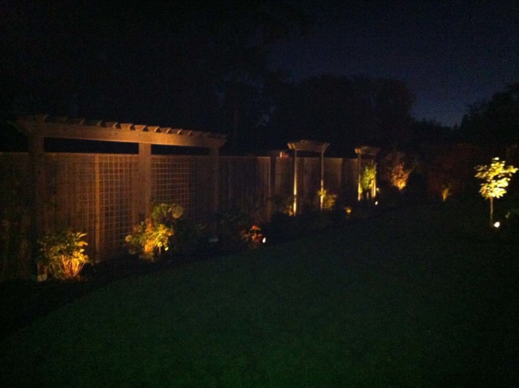 perimeter screens at night with landscape lighting