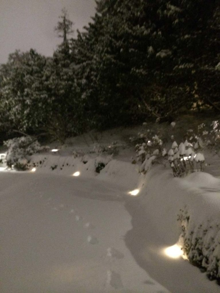 rubble retaining wall with garden landscape design with snow