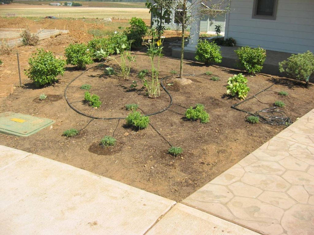 drip system irrigation for new landscape plan