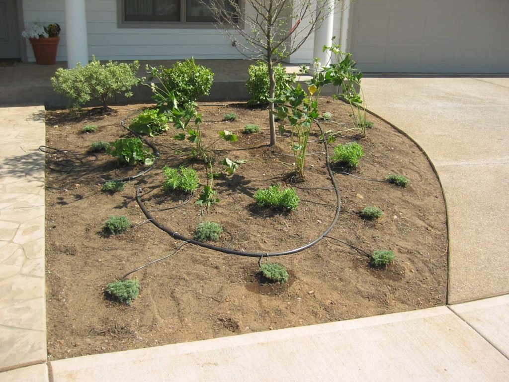 drip system irrigation for new landscape plan 2