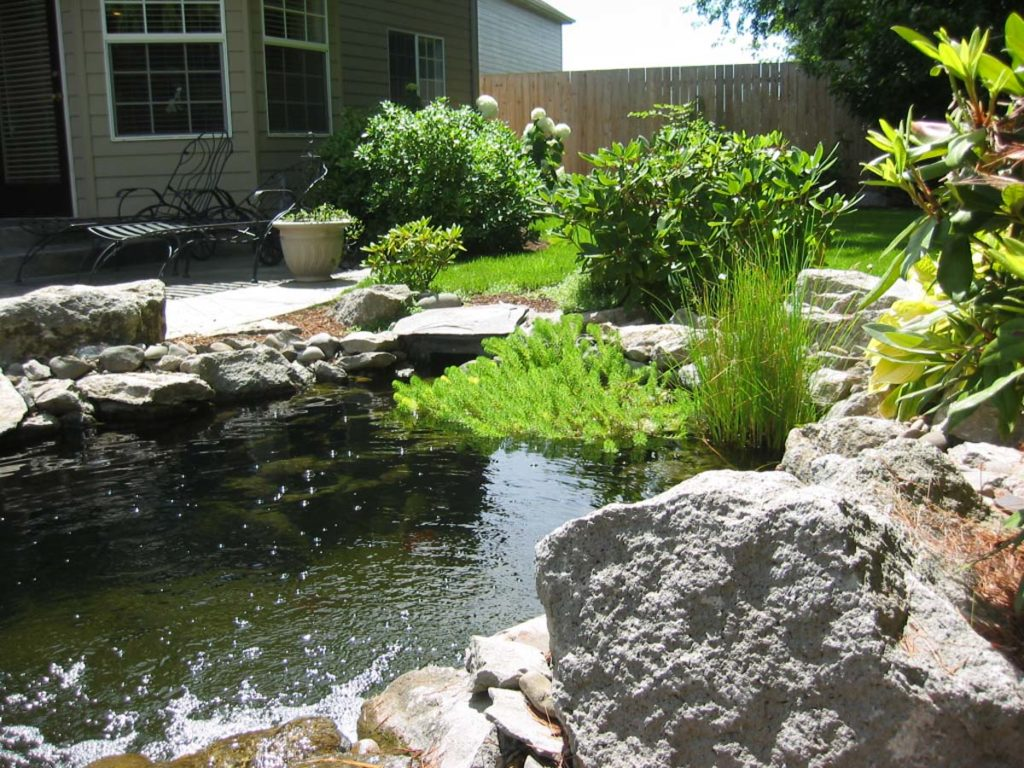 new pond with water feature and fish in salem oregon 5