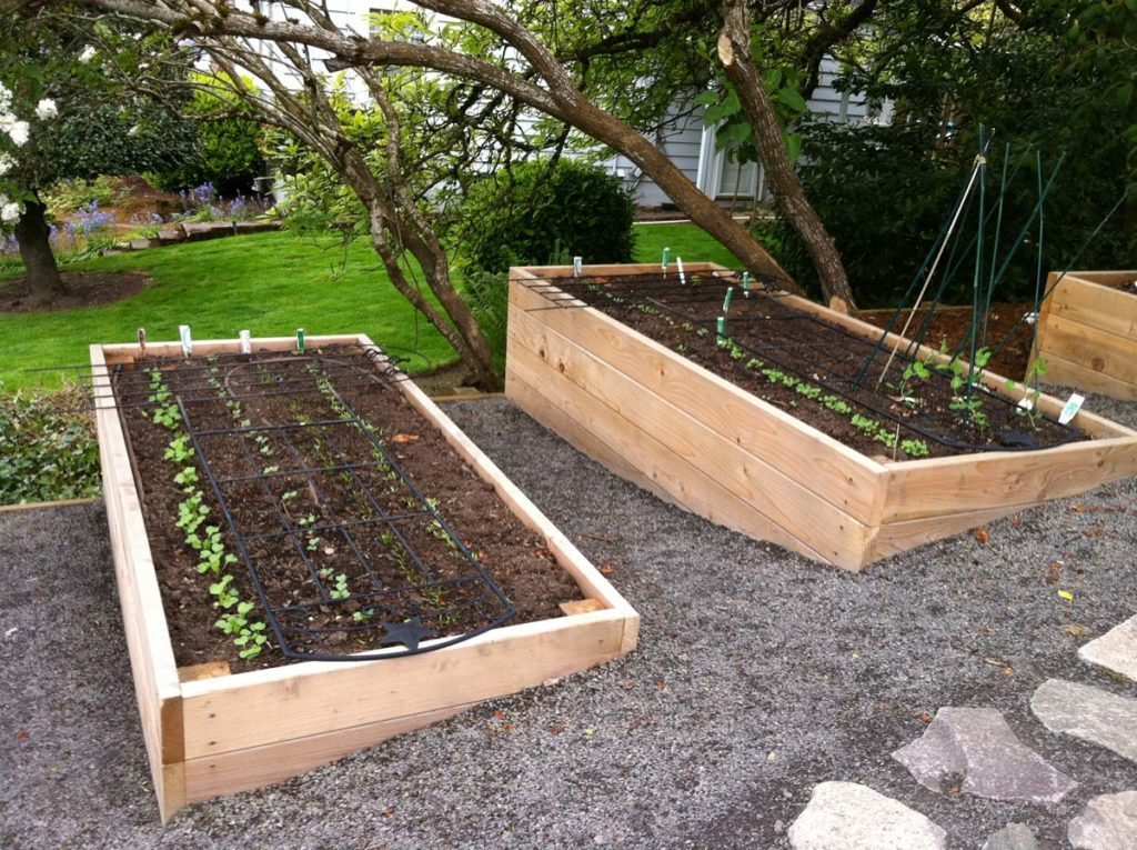 raised beds landscape design 2