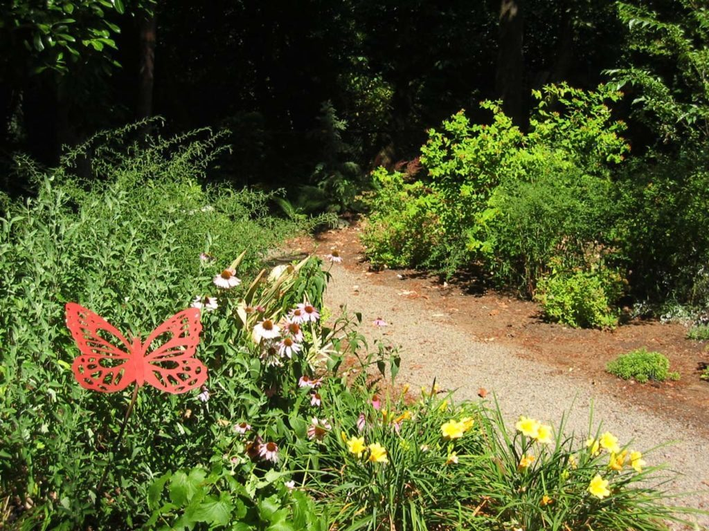 crushed gravel path with native plants landscape design