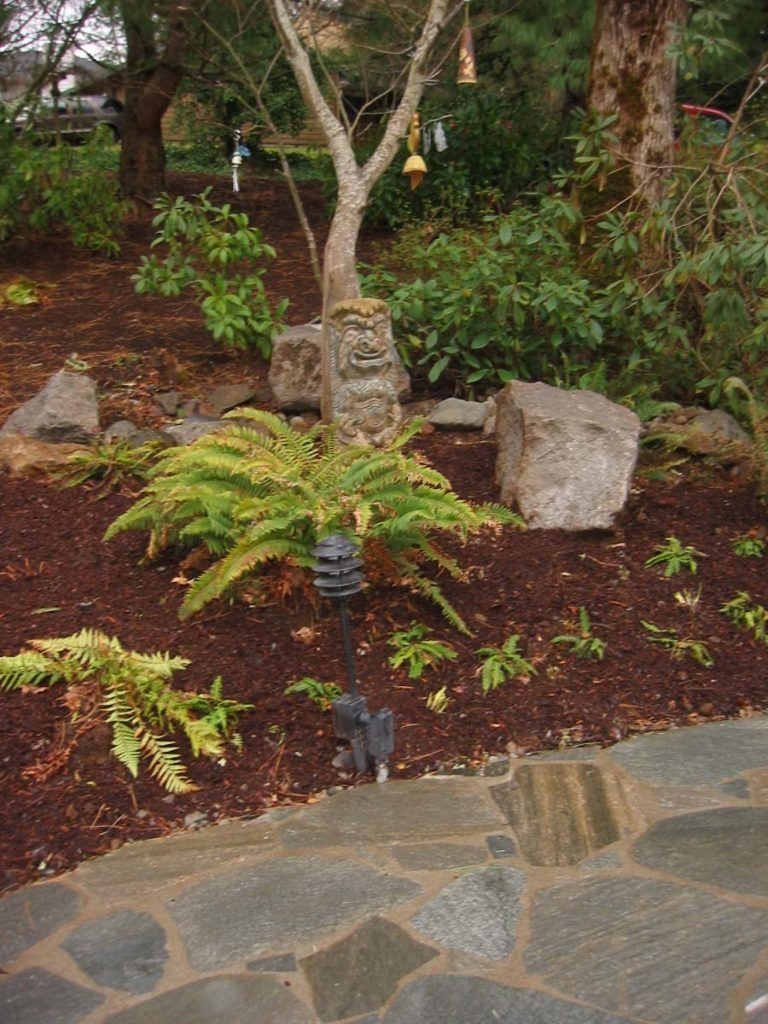 flagstone masonry and plants landscape design