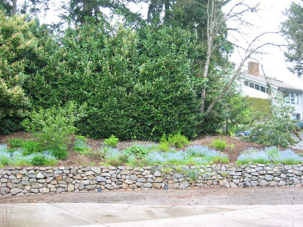 rubble retaining wall with garden landscape design 2