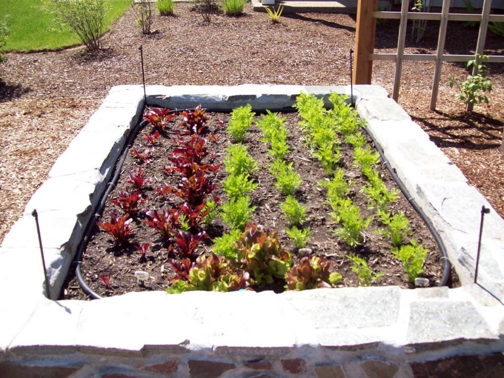 raised beds in new landscape design
