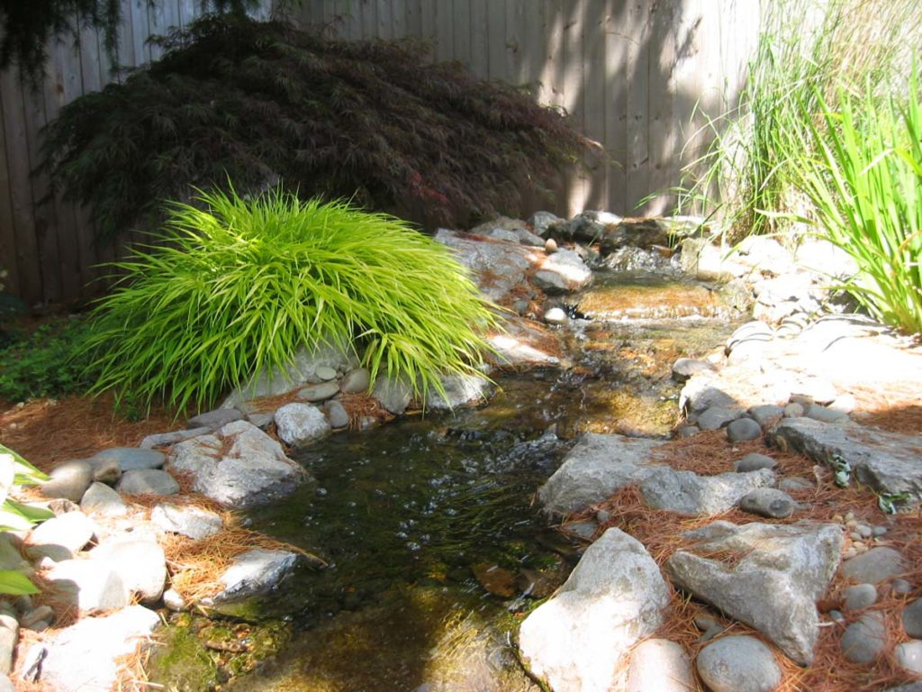 new pond with water feature and fish in salem oregon 2