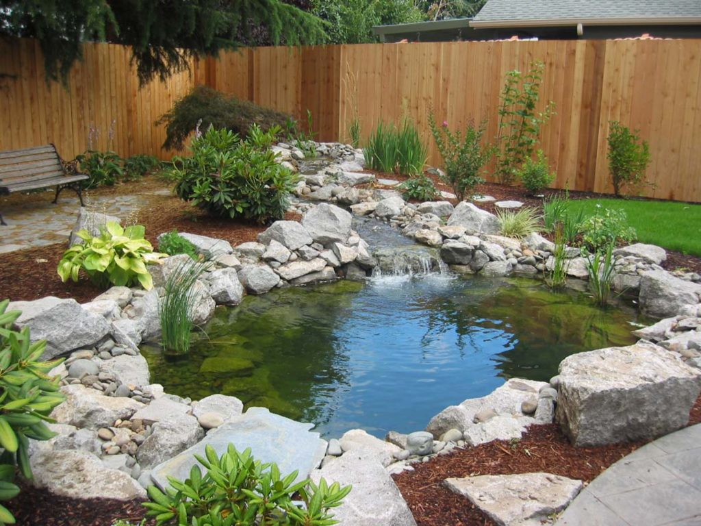 new pond with water feature and fish in salem oregon 9