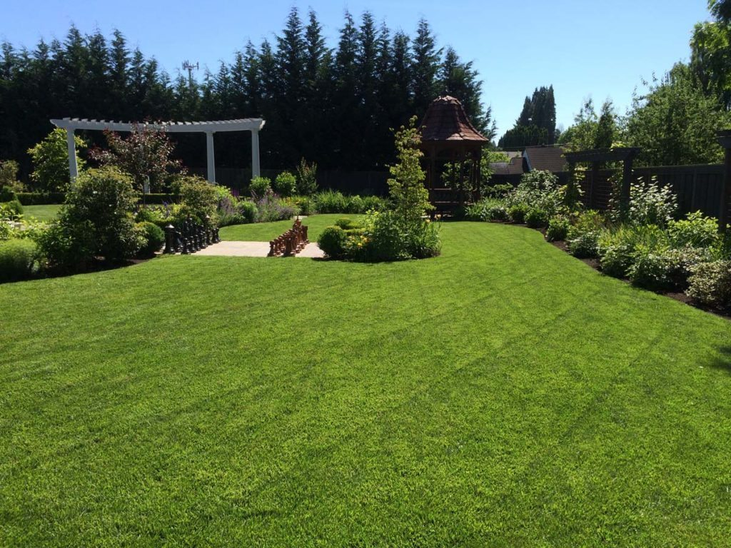 lawn and open spaces in landscape design