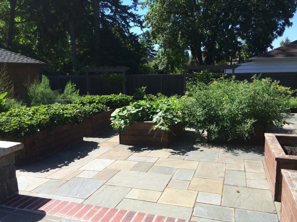 bluestone courtyard and raised beds in salem oregon 2