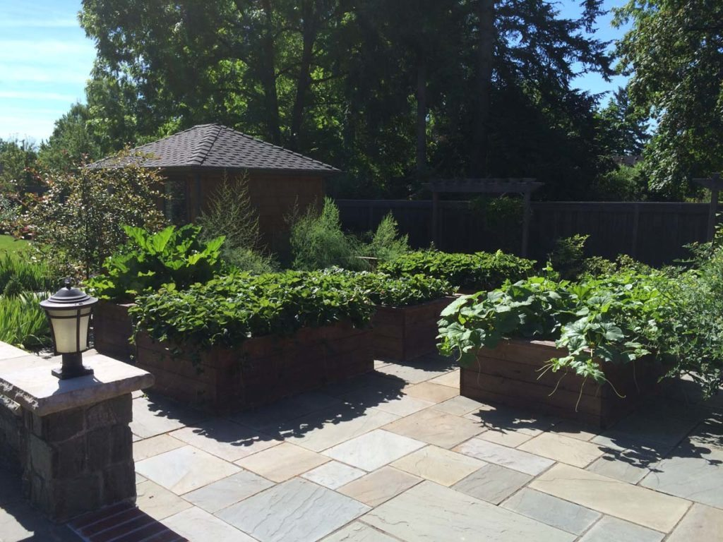 bluestone courtyard and raised beds in salem oregon