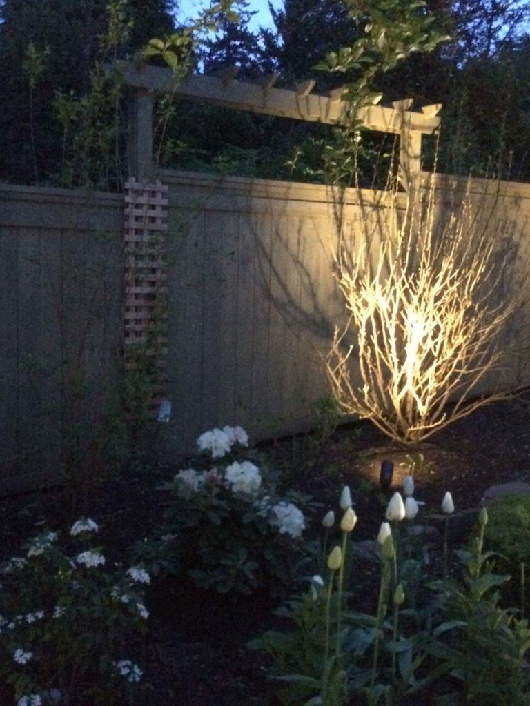 landscape lighting design salem oregon