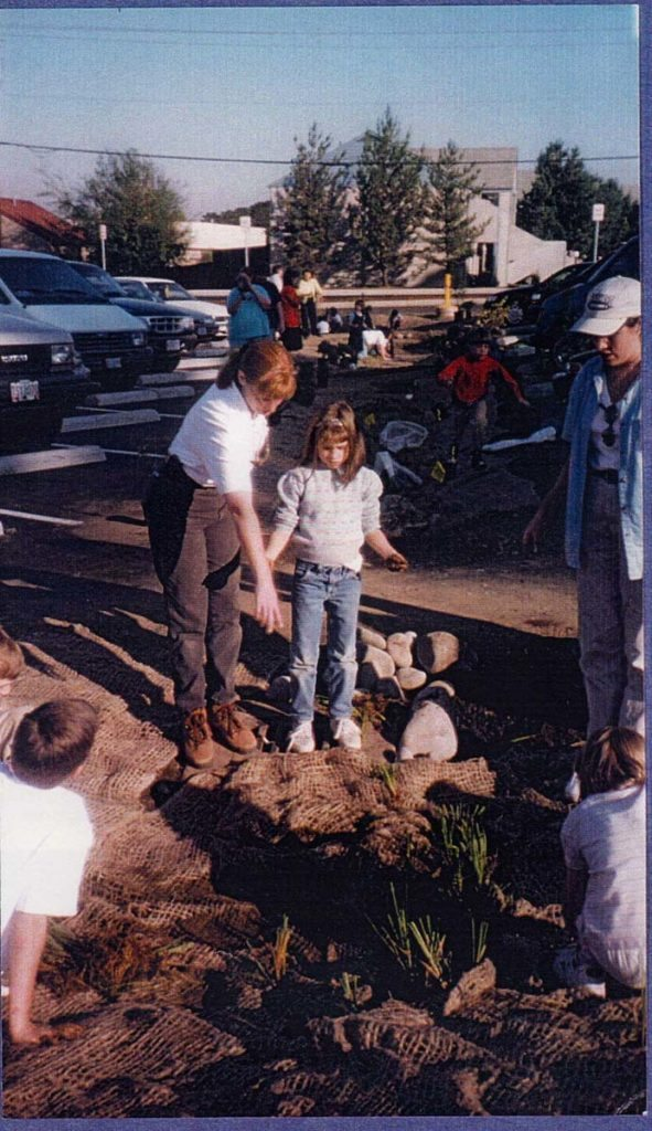 liberty school Bioswale Planting landscape design