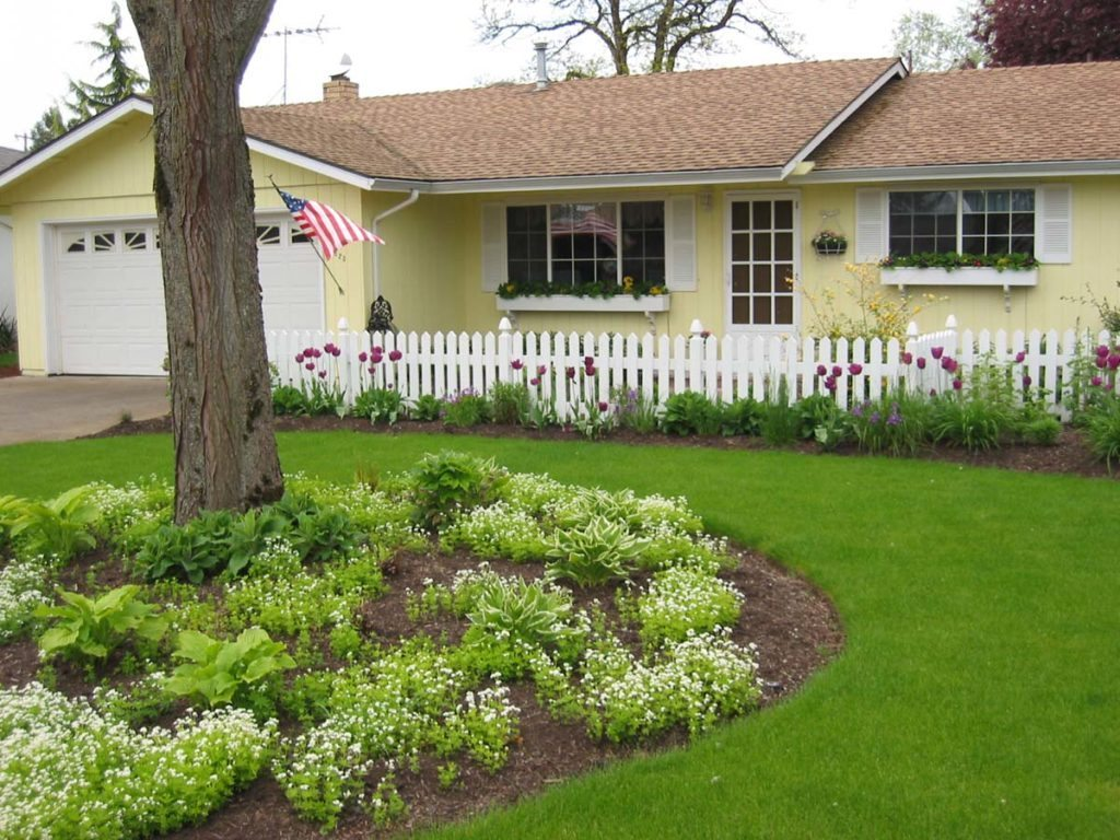 front landscaping design with grass lawn