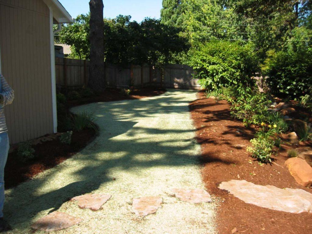 lawn hydroseeding landscape design