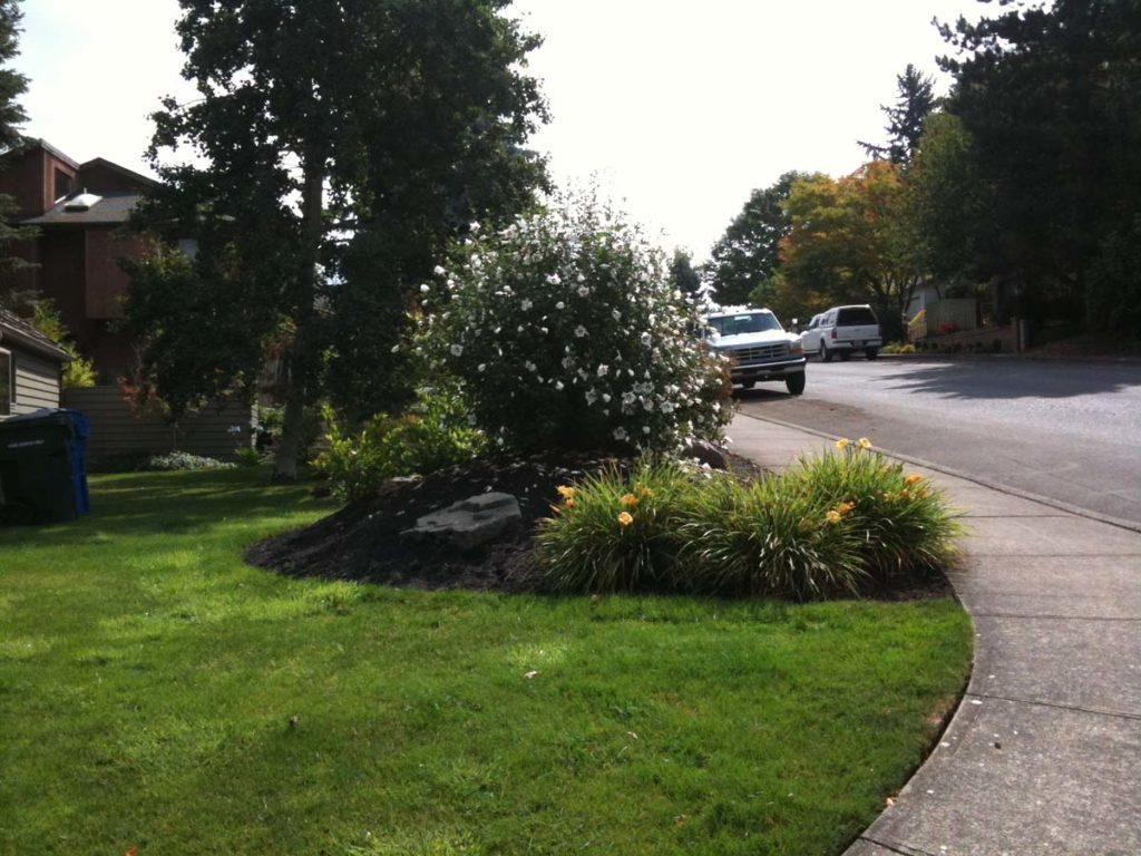 dorchester heights landscape design salem