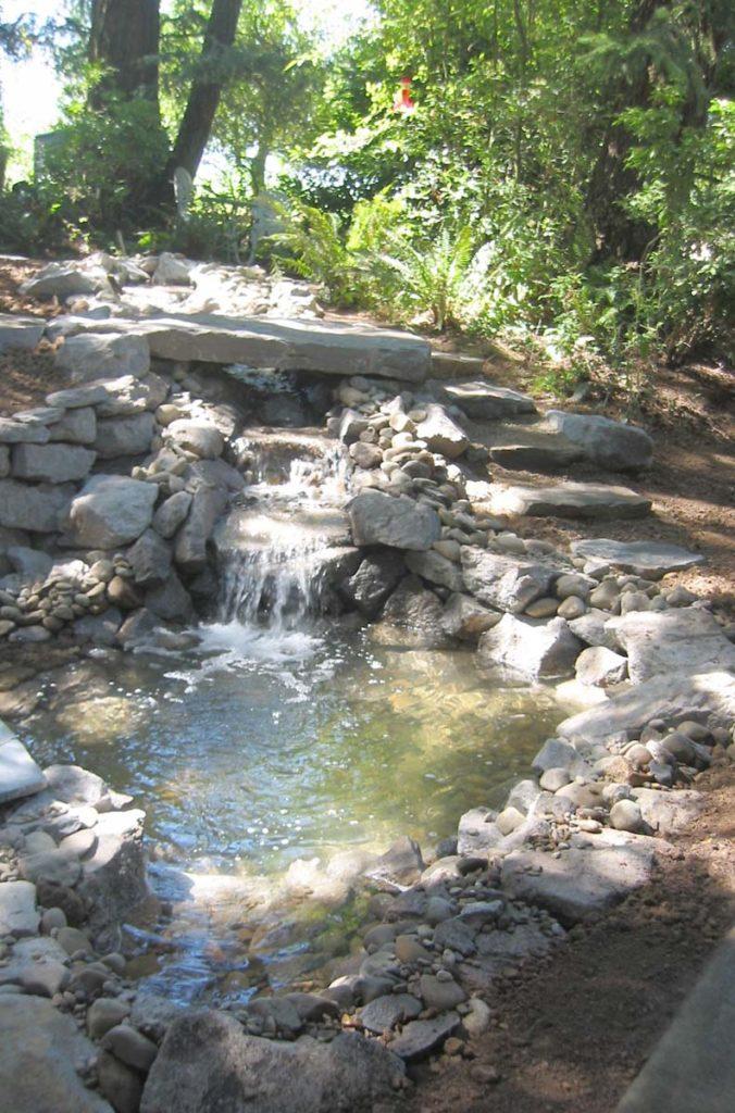 water feature in native plants landscape design