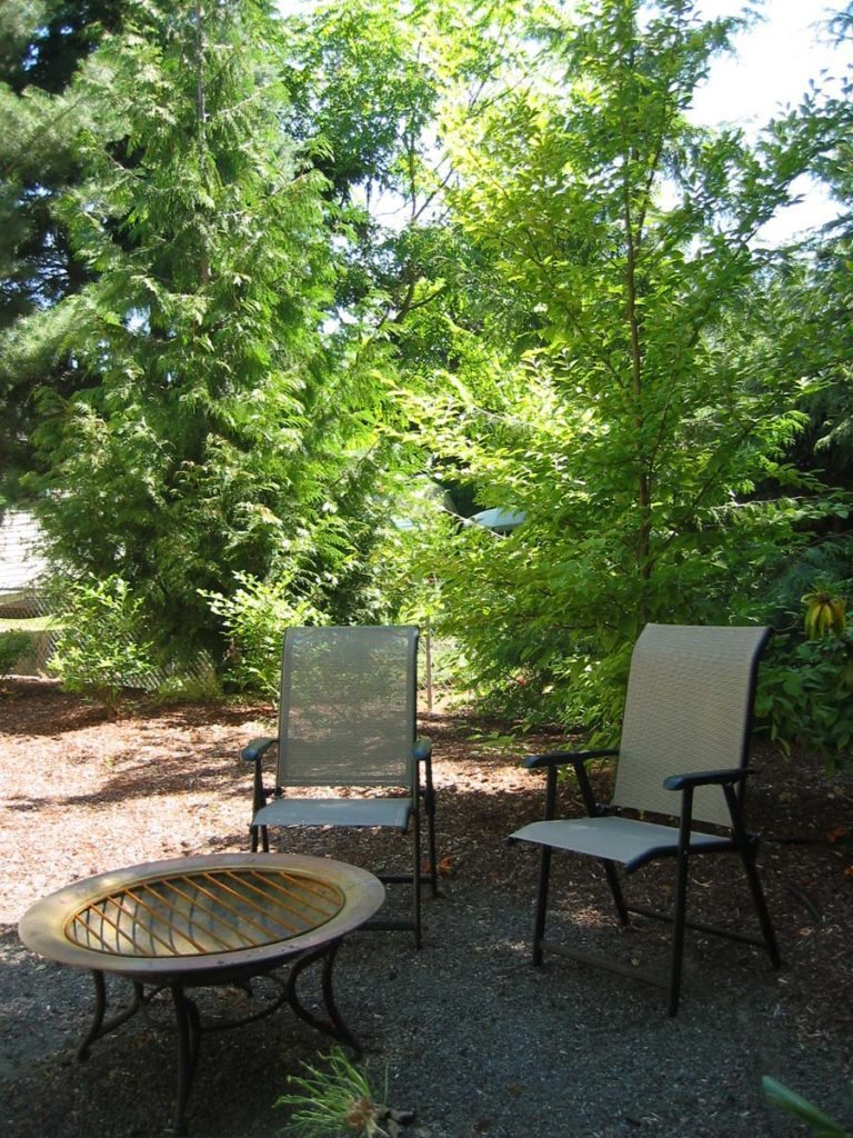 fire pit with outdoor furniture and native plant buffer landscape design
