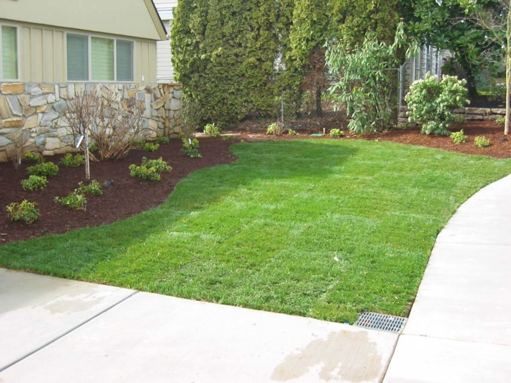 lawn and catch basin design salem oregone