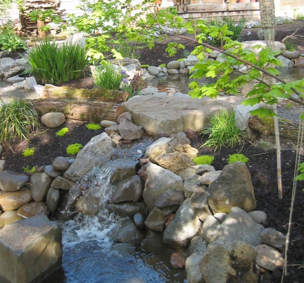 native plants & water falls in landscape design