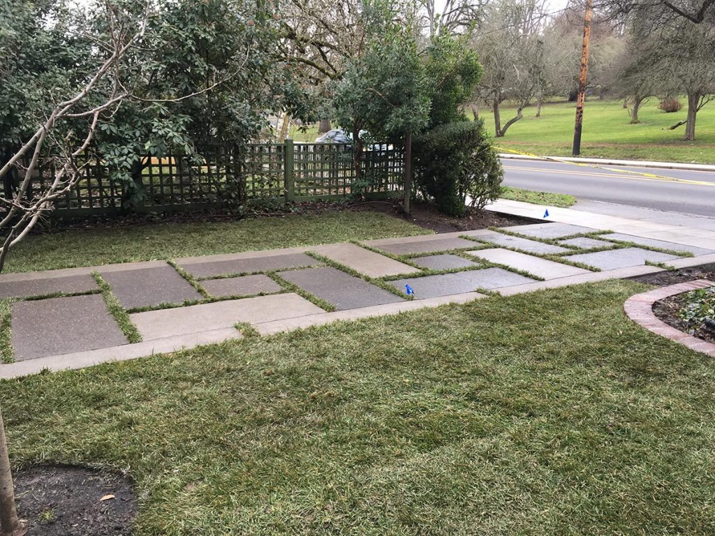 driveway restoration civic involvement after landscape design