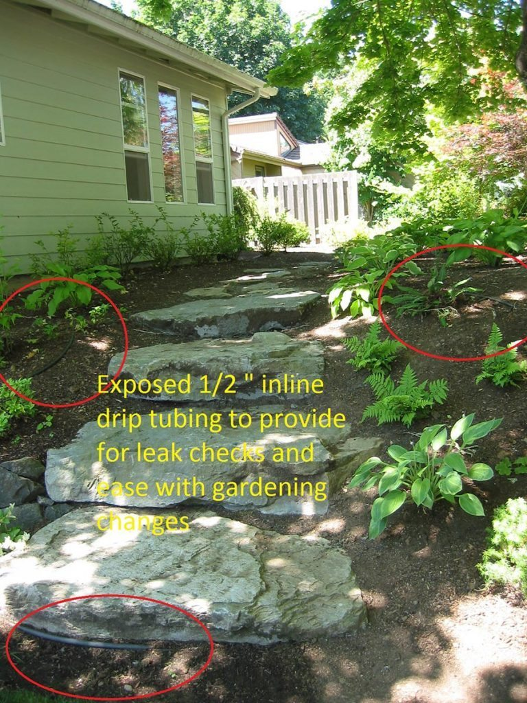 drip system irrigation for new landscape plan 7