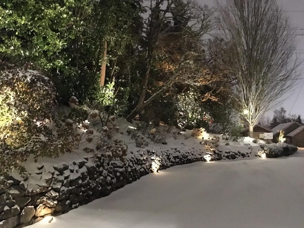 landscape lighting design salem oregon snow 5