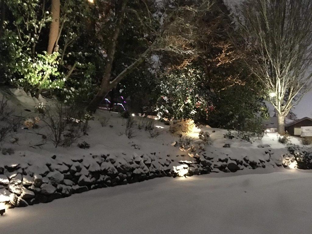 landscape lighting design salem oregon snow 4