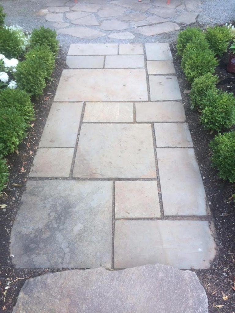 pathway with stone steps landscape design