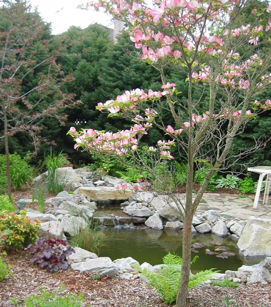 pond with boulders and waterfall landscape design