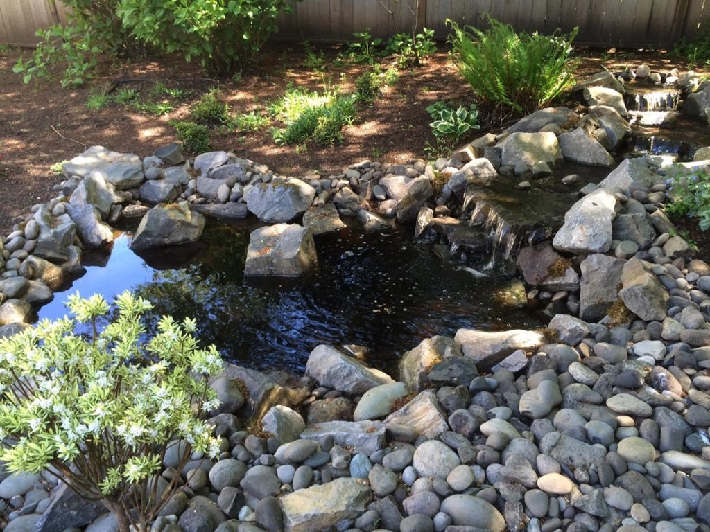 pond waterfall design salem landscape