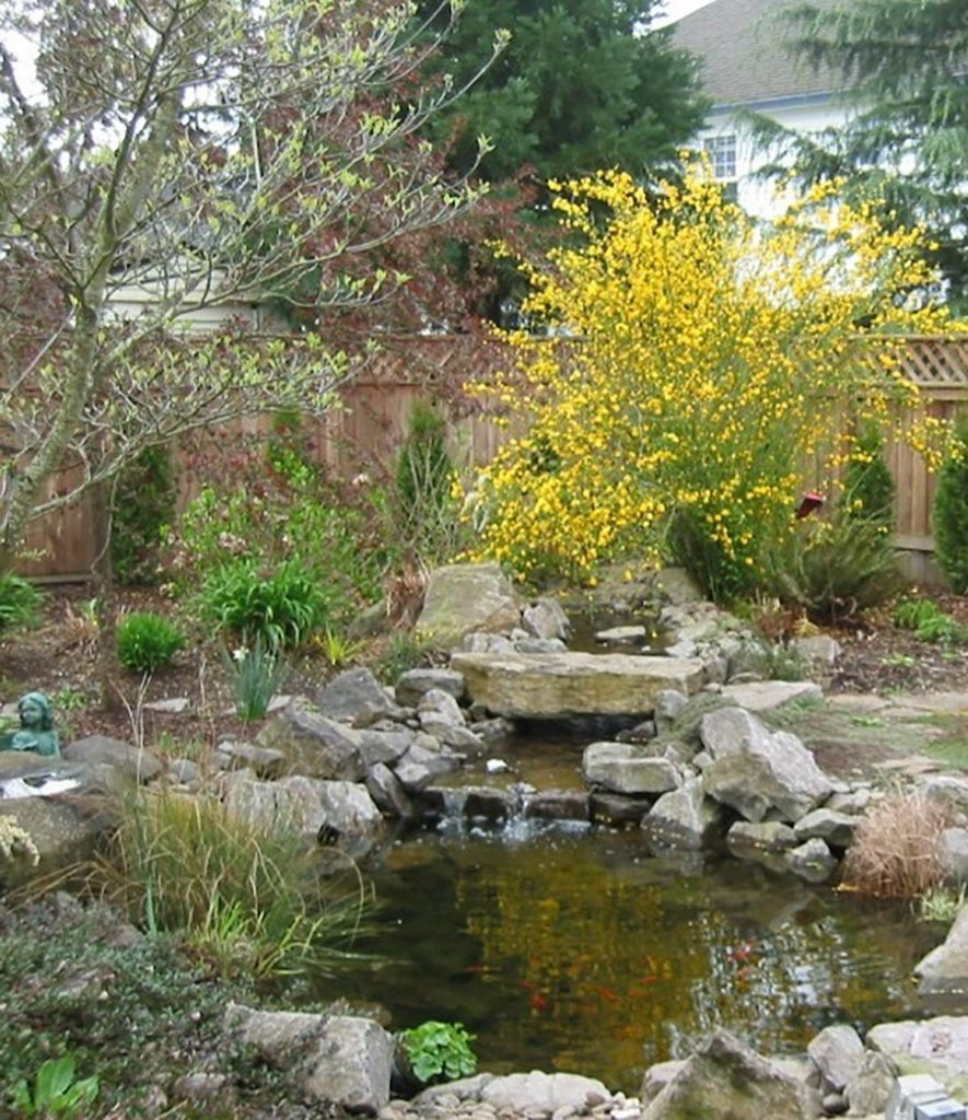 pond with boulders and waterfall landscape design 4