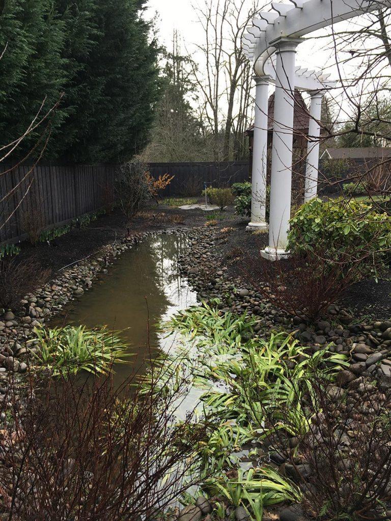 rain garden planting with pergola landscape design 3