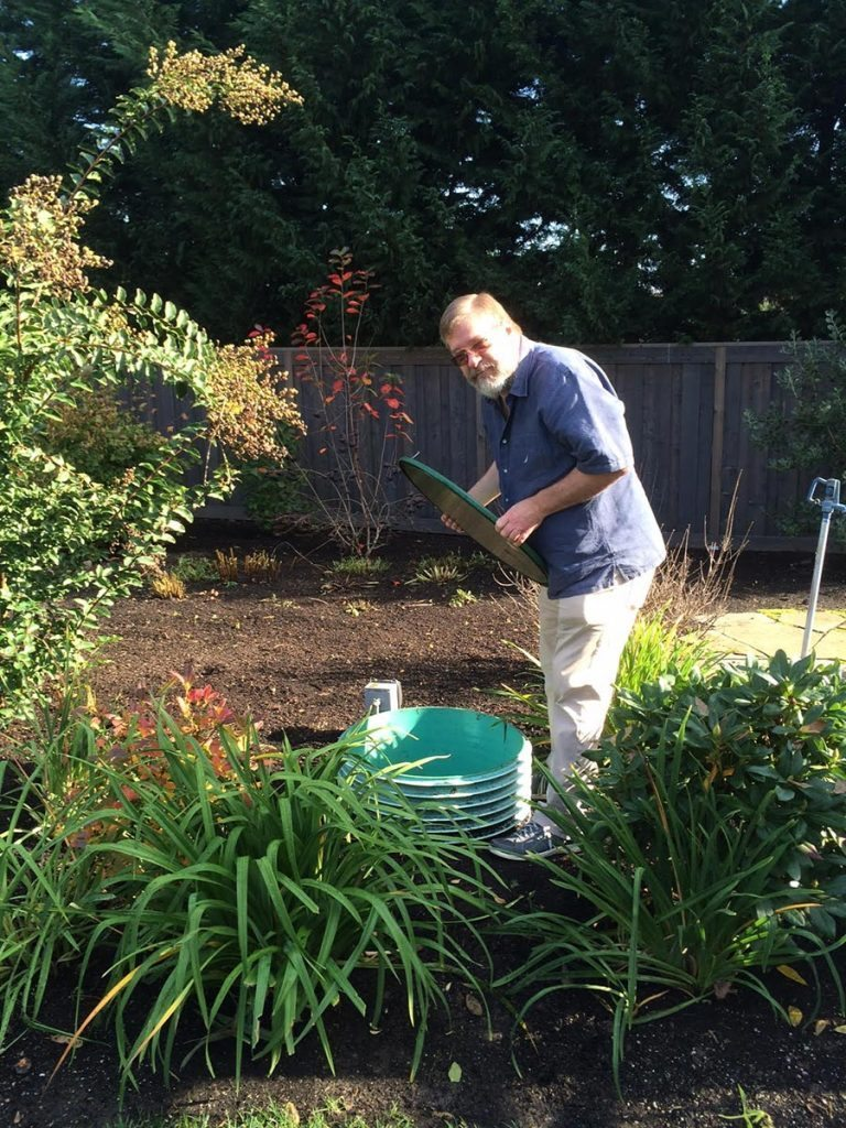 rain garden planting with pergola landscape design 2