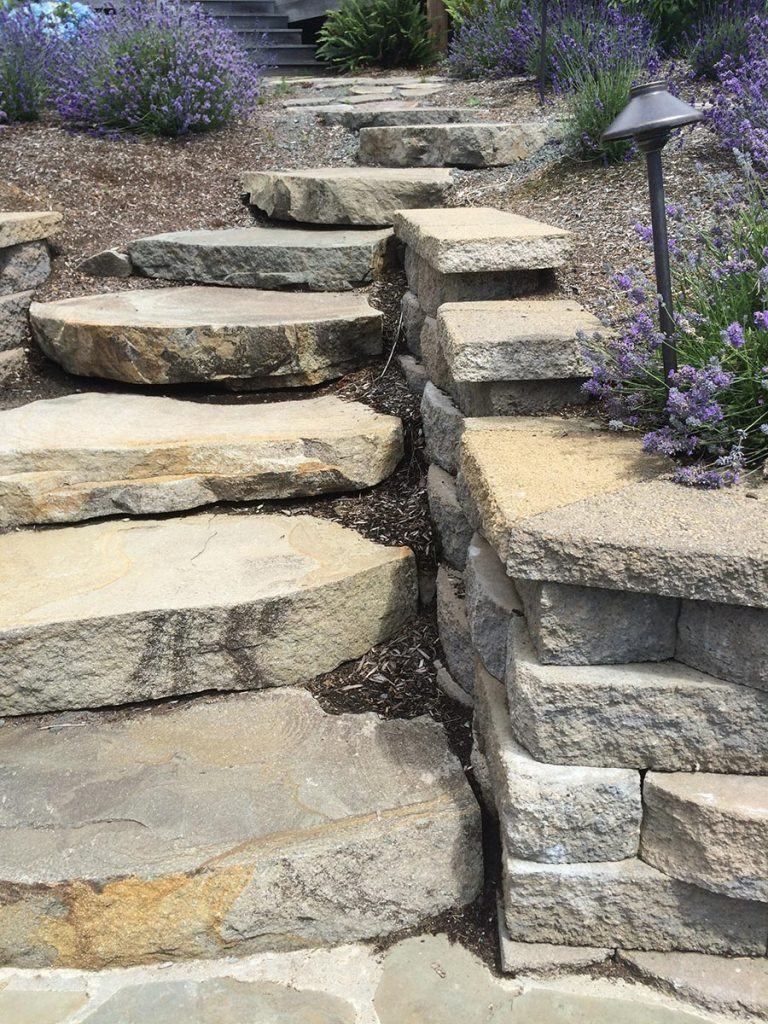 garden wall with slab steps and lavender landscape 3