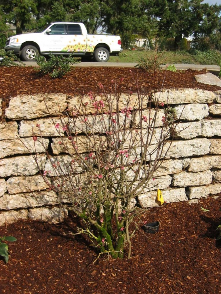 recycled concrete wall installation in salem oregon